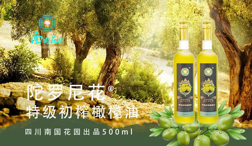 陀罗尼花-特级初榨橄榄油(玻璃包装)2瓶