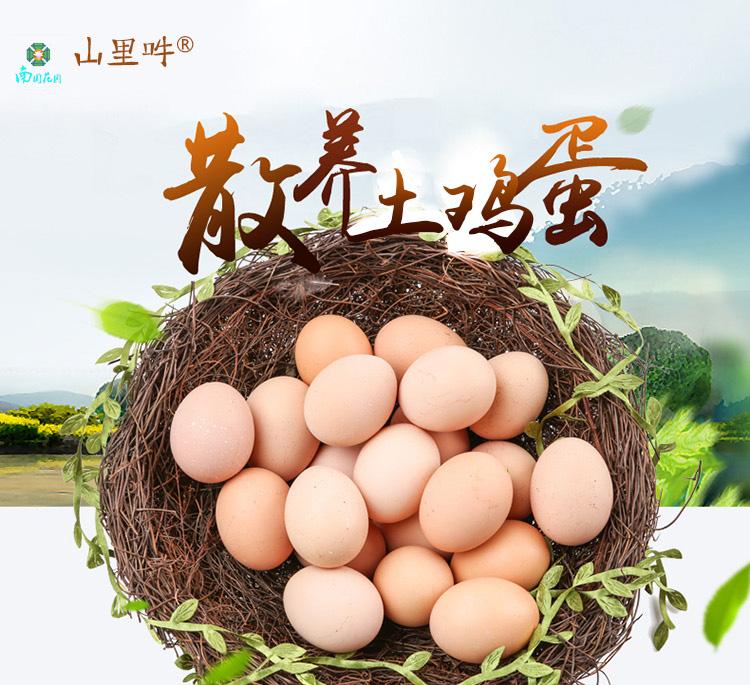 土鸡蛋(一盒10个)